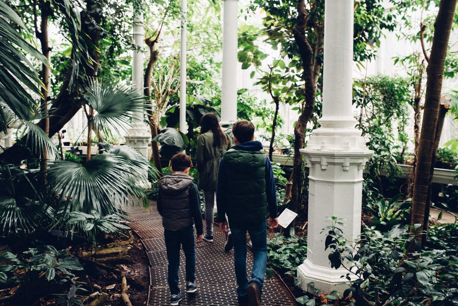 copenhagen-botanical-gardens-house-of-valentina-17