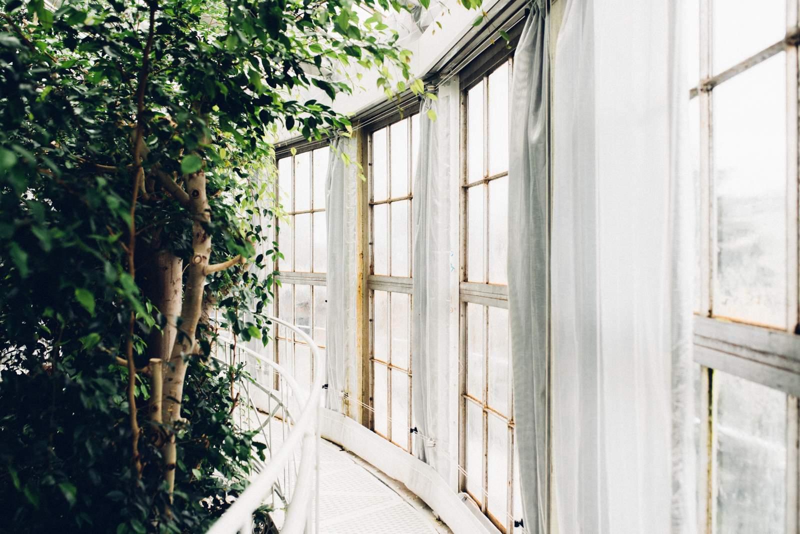 copenhagen-botanical-gardens-house-of-valentina-27