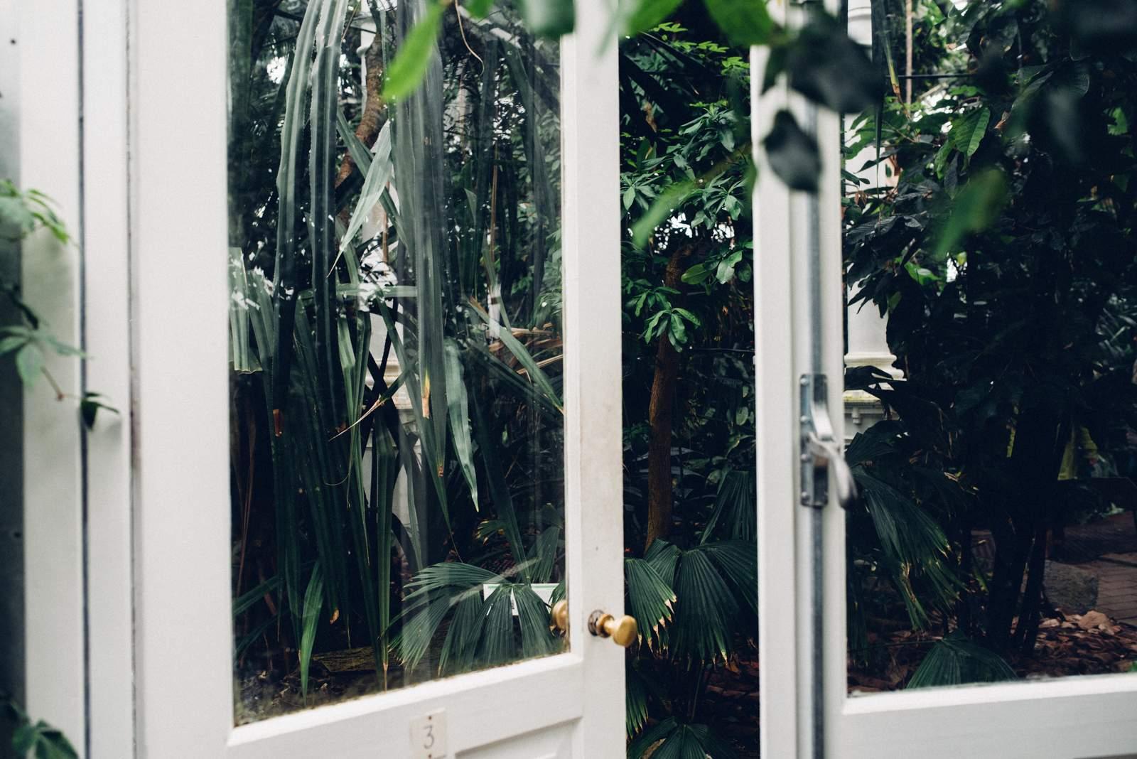 copenhagen-botanical-gardens-house-of-valentina-37