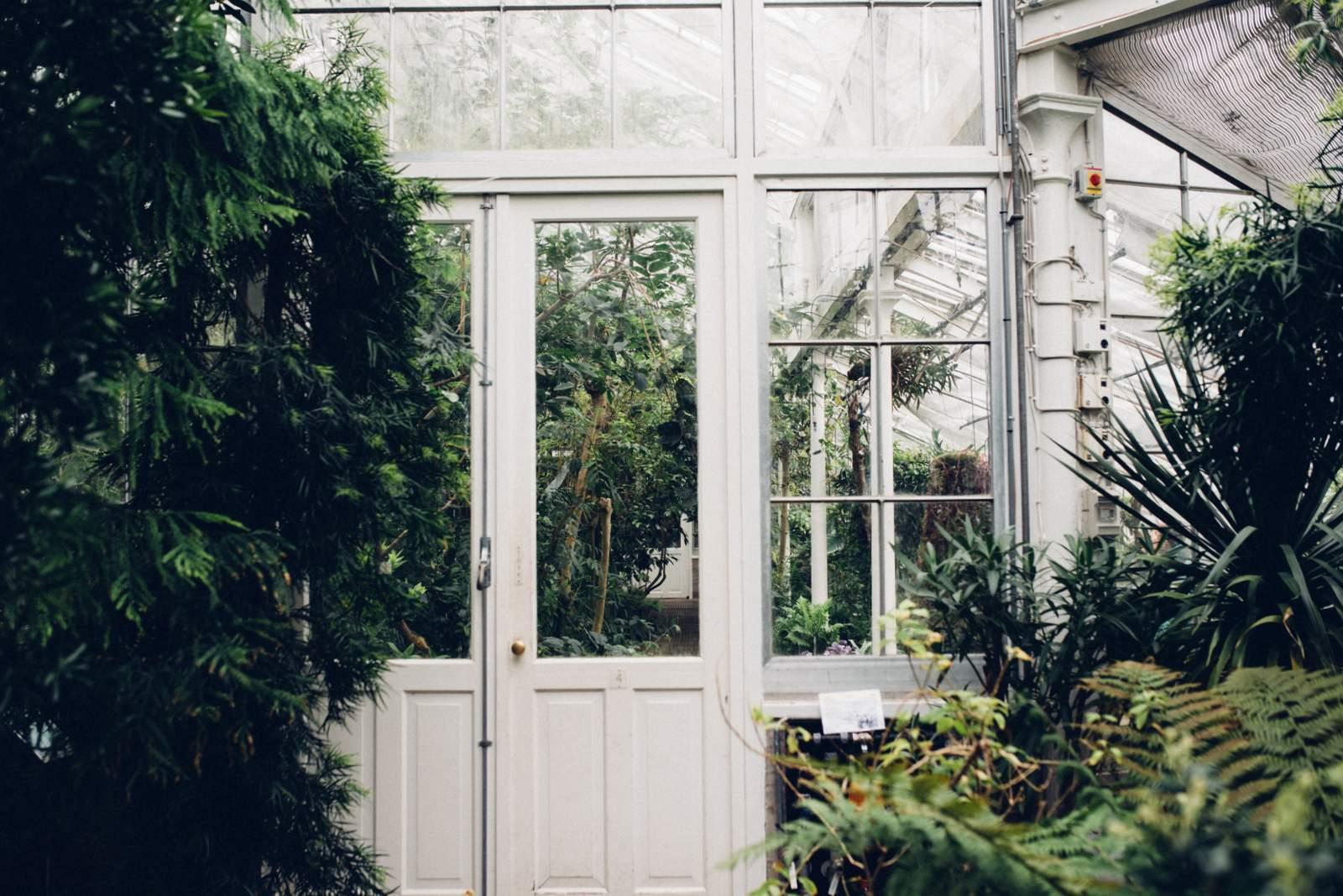 copenhagen-botanical-gardens-house-of-valentina-4
