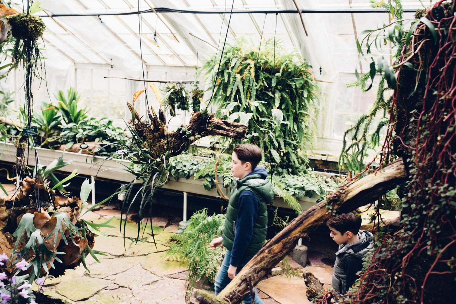 copenhagen-botanical-gardens-house-of-valentina-5