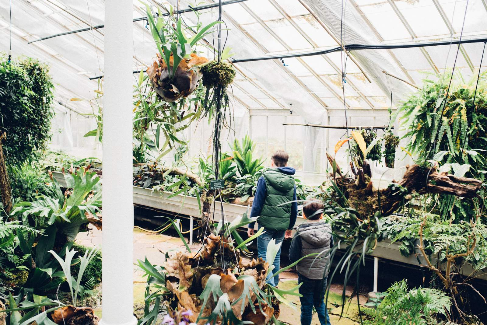 copenhagen-botanical-gardens-house-of-valentina-6