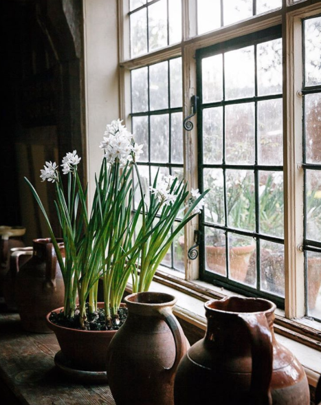 English Countryside :: Marte Marie Forsberg
