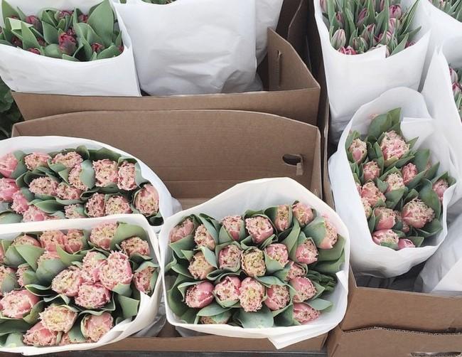 Florist Copenhagen 4 -House of Valentina.jpg