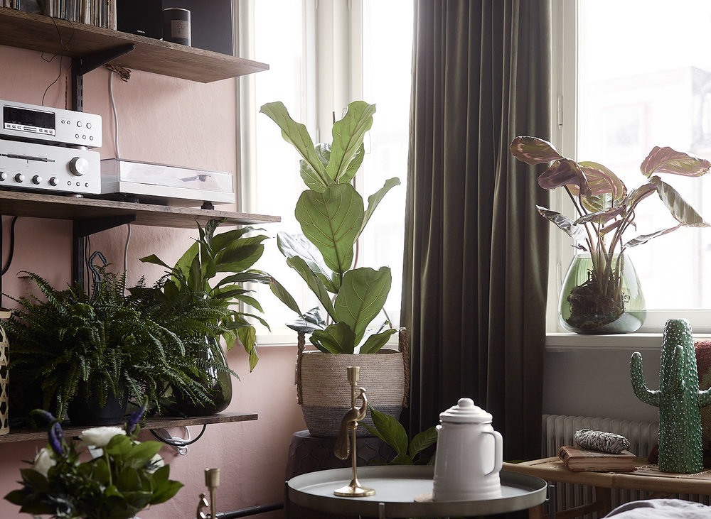 4. Green Makes A Space feel Alive and Homey