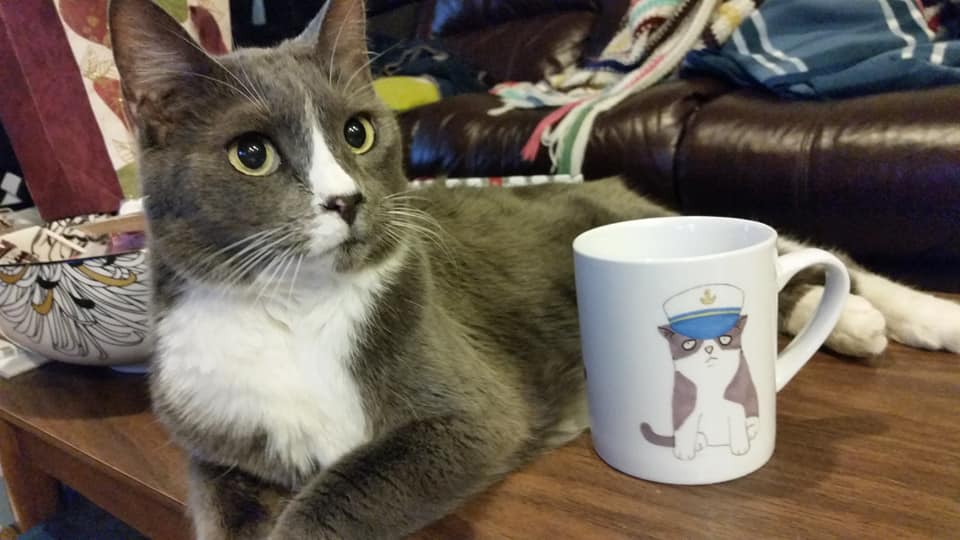 Stanley and Stanley in mug form