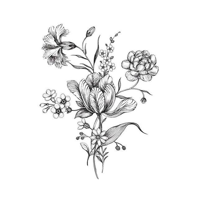 Wild Flower Season