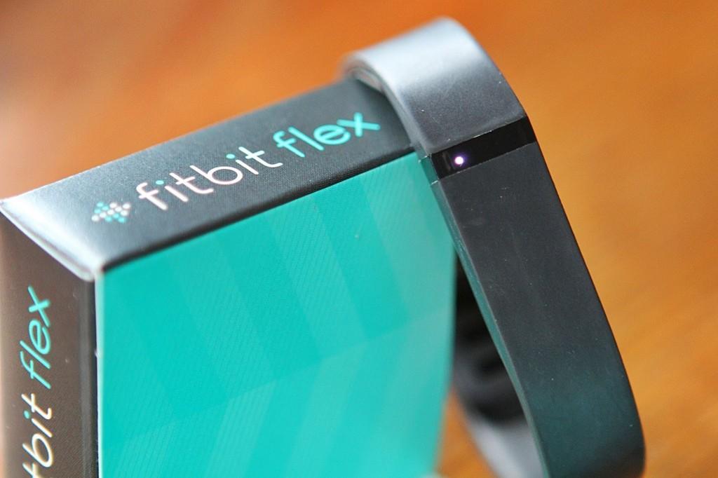 FitBitFlex-1