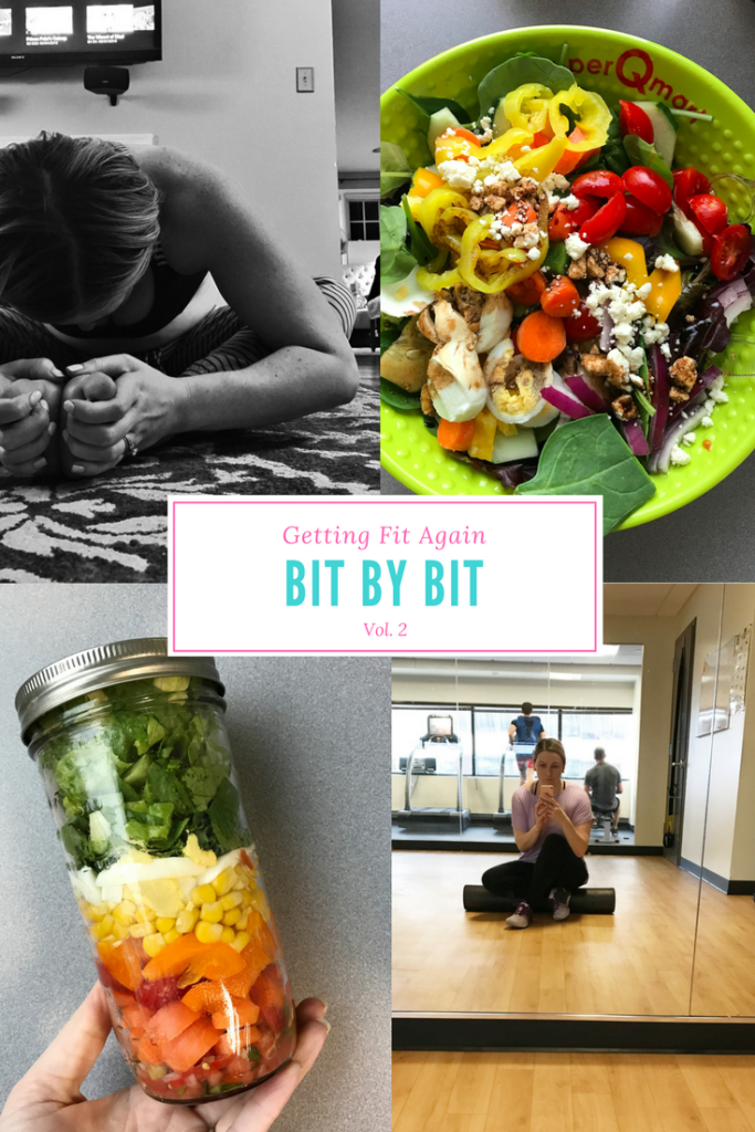 Fit Bit by Bit Vol. 2