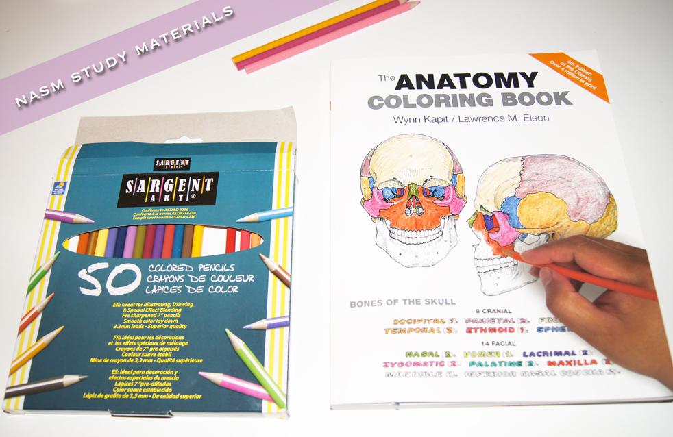 Nasm-Study-Guide--1-