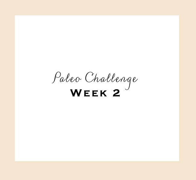 Paleo-Week-2