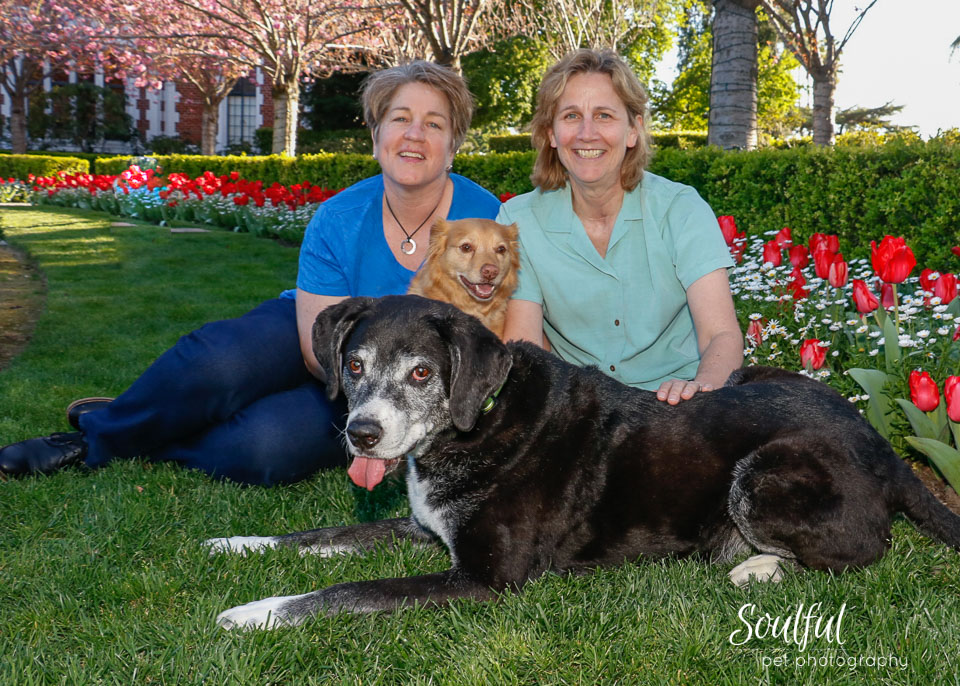 Family portrait with tulips.jpg