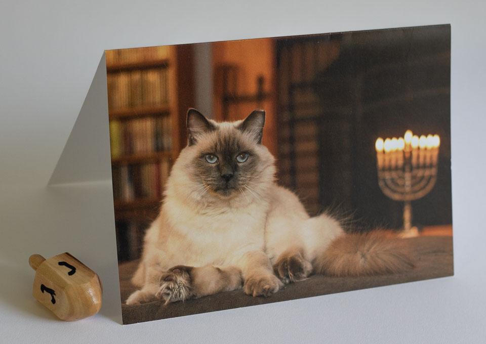 Holiday Card 2016 Hannukkah.jpg