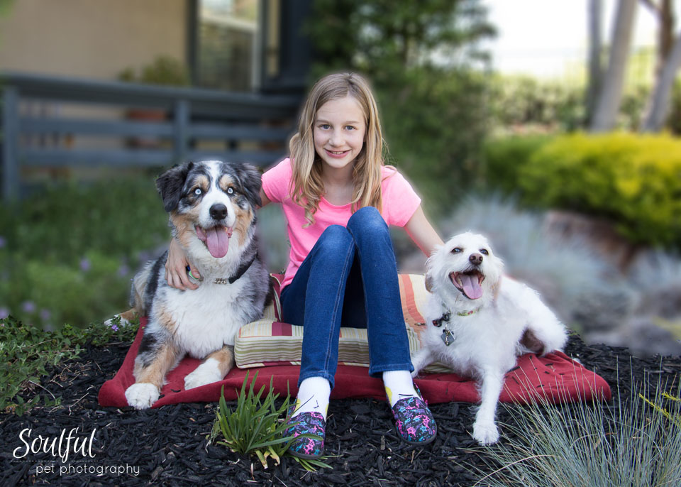 Wanted: Dogs & Their Kids -