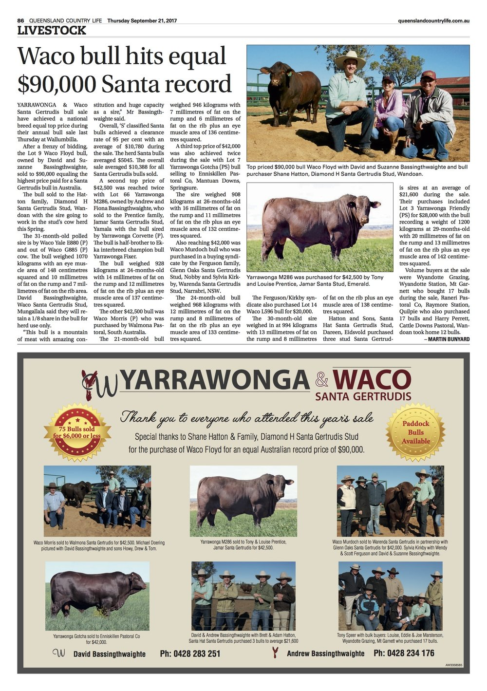 YW 2017 QCL Post Sale Report.jpg