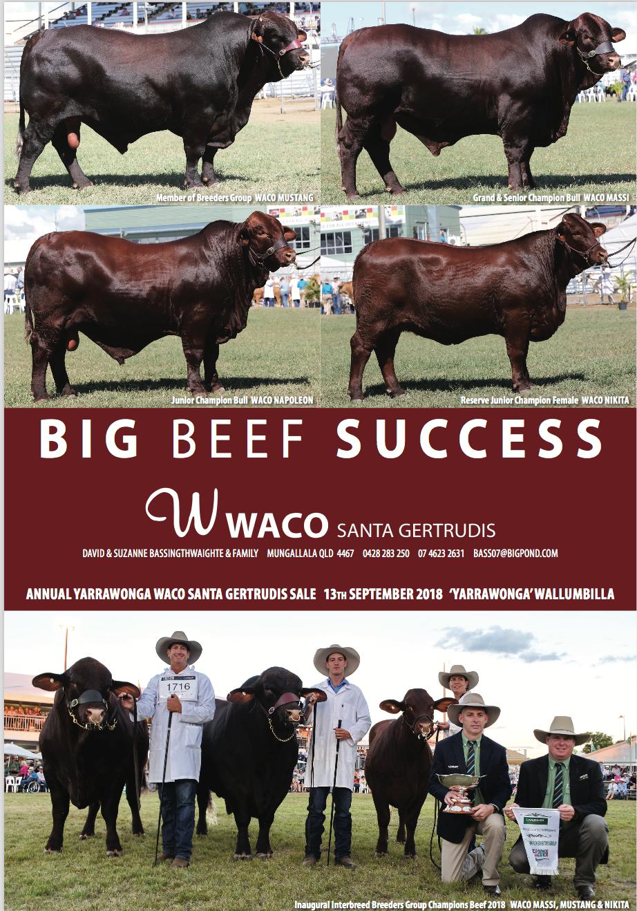 WACO Beef Ad jpeg.png