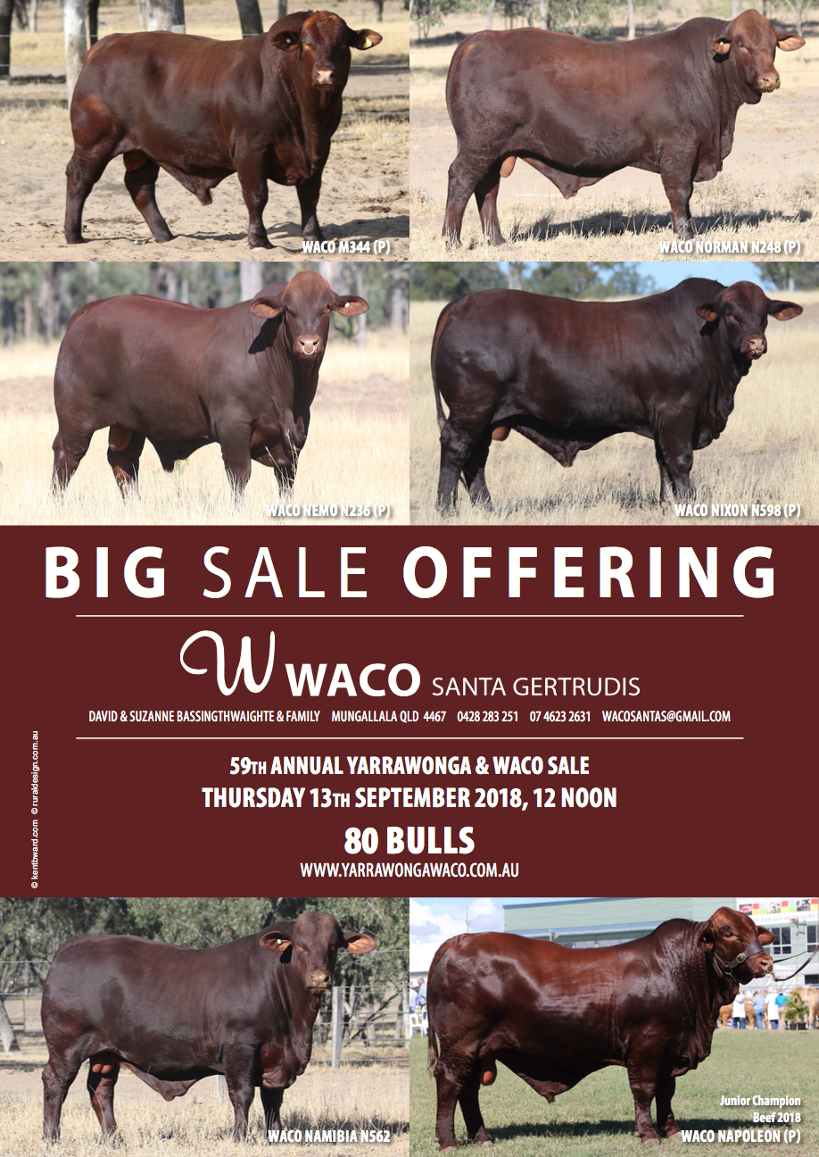 WACO Journal Ad July 18.png