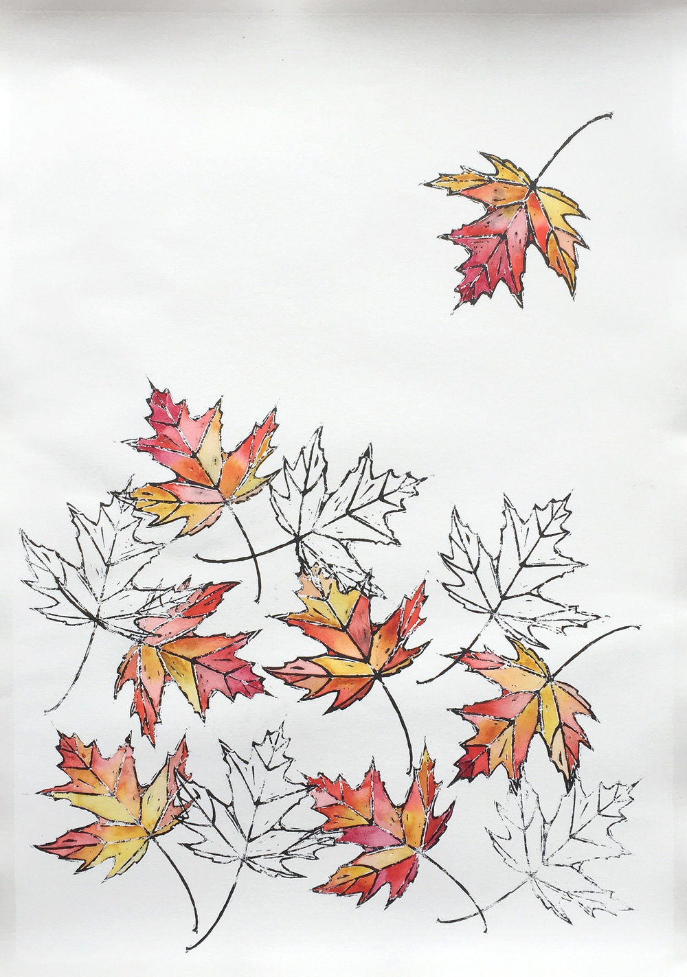 Falling - Red Maple