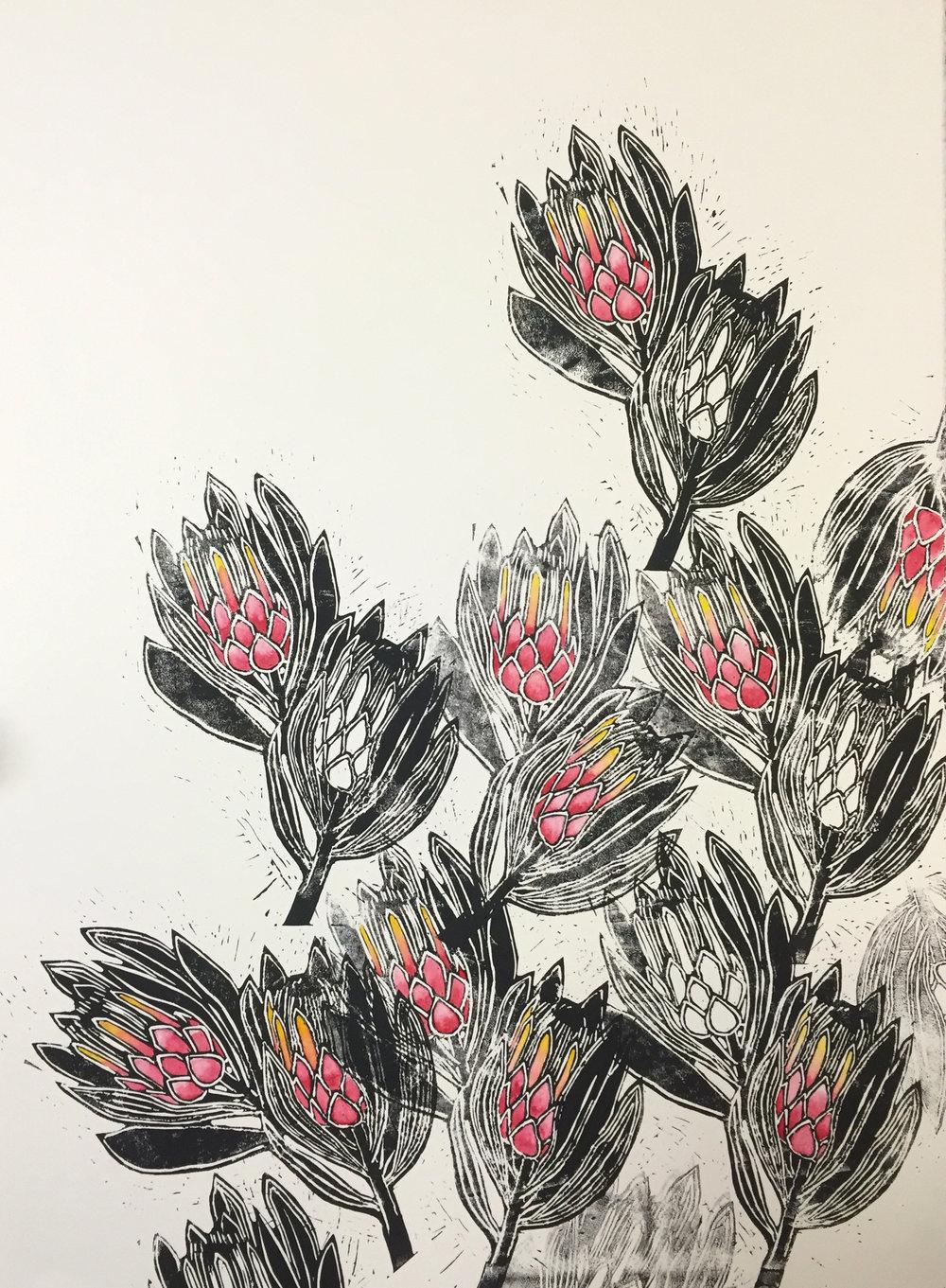 Blush - Protea