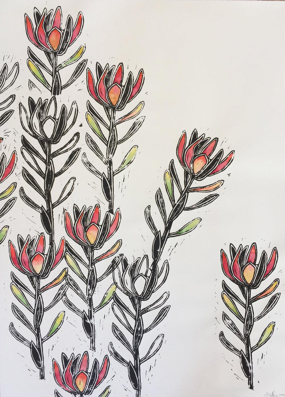Sway - Leucadendron