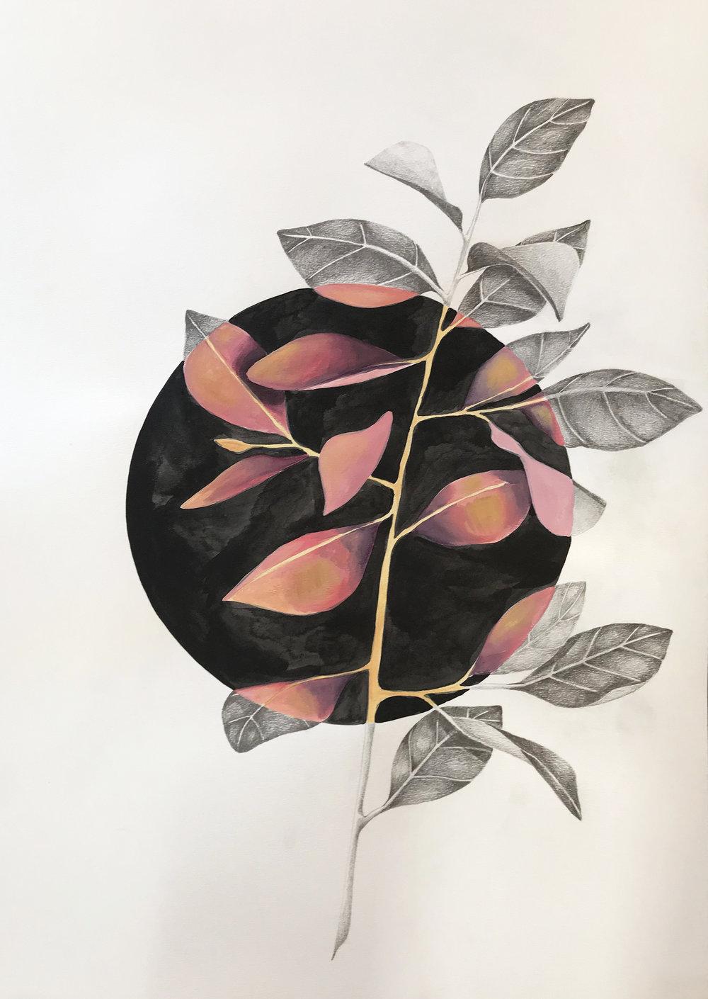 Magnolia Noir