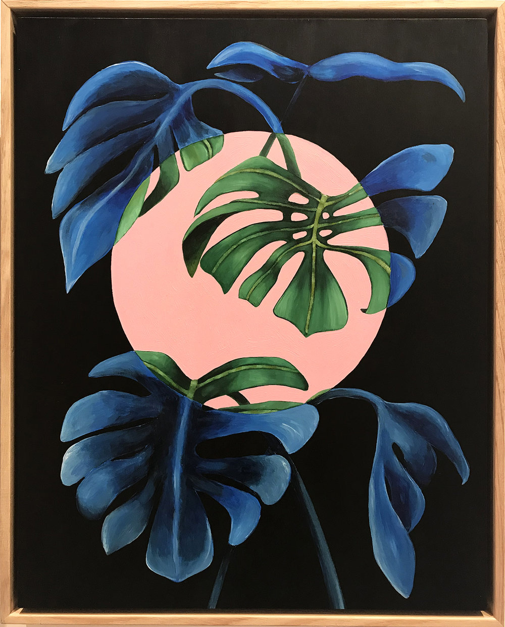Monstera Blues, 2018