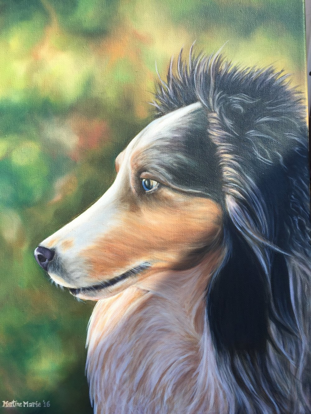 Sheltie16x20 copy.JPG