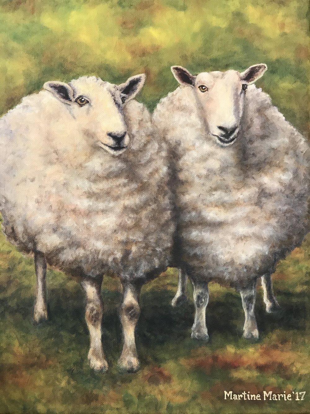 Sheep.4JPG copy.JPG