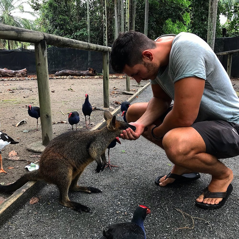 Henrik and the handsome wallaby (Henrik's not too bad either).
