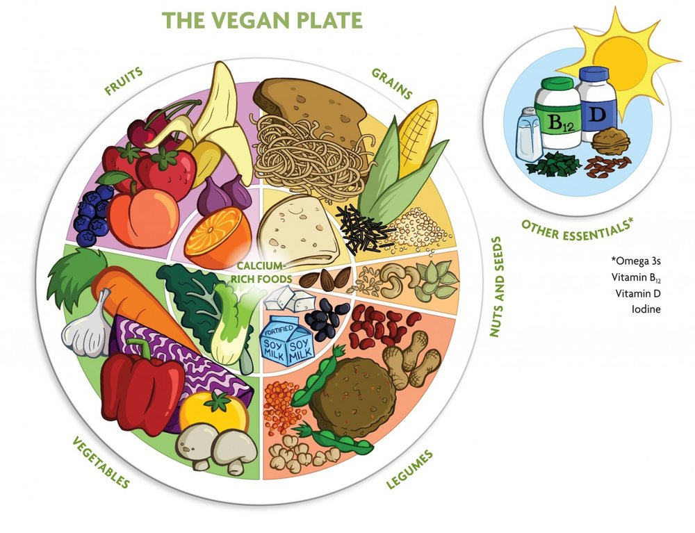 The Vegan Eat Well plate (borrowed from The Vegan Society: https://www.vegansociety.com/resources/nutrition-and-health/nutrition-overview )