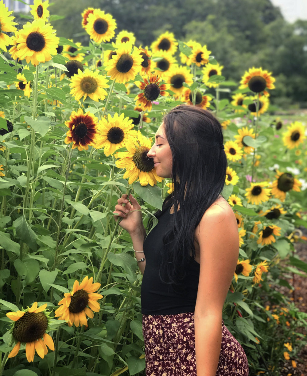 Smelling sunflowers.