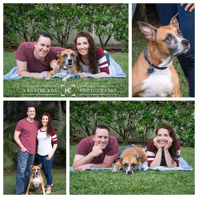 I mean even the dog is photogenic 😂😍 #krossroadsphotography #katandkody . . . #hawaii #oahu #photobooth #photoboothfun #portraiture #photography #photoshoot #familyphotographer #luckywelivehawaii #coupleshoot #couplesgoals  #oahufamilyphotography #ohana #hawaiifamilyphotographer #photoboothhawaii  #photoboothprops #awesomeprops #birthday #senior #graduation #engagement #party #companyparty #event #unlimitedprints #multipletemplateoptions #local #bestdeal