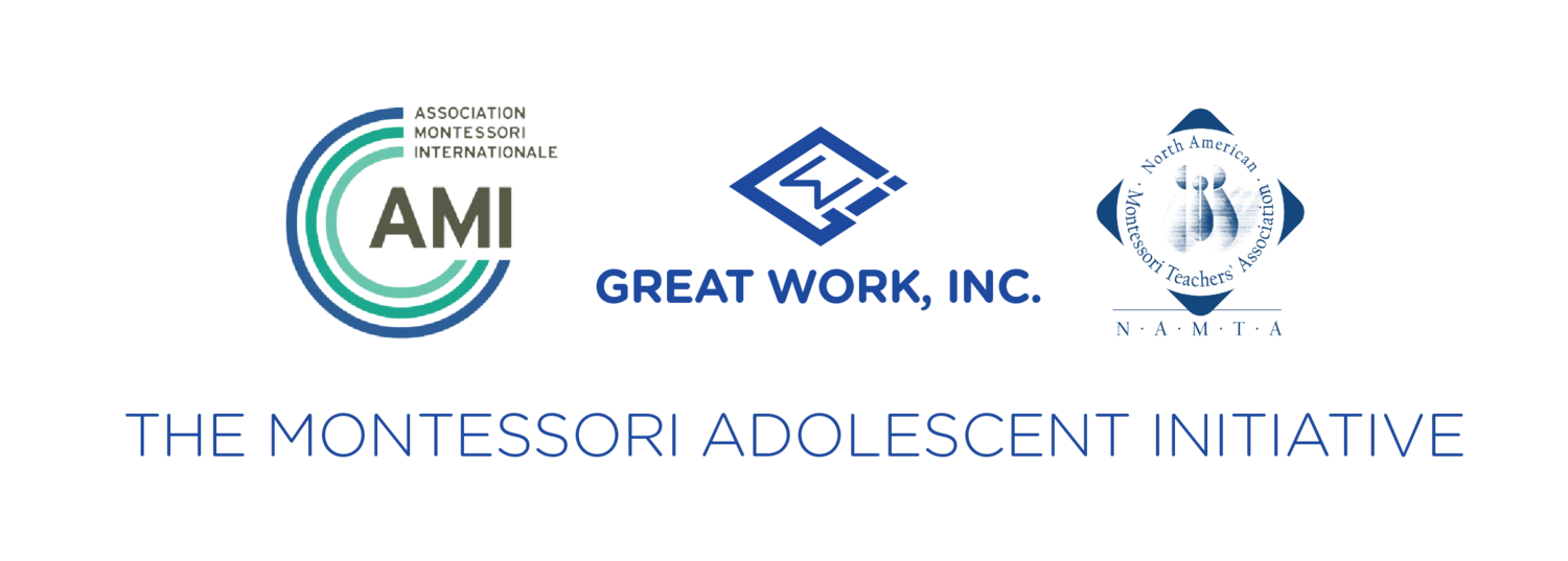 Montessori Adolescent Initiative