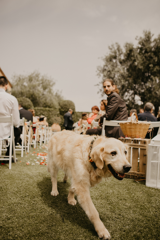 ismael lobo fotografo bodas y eventos barcelona-9536.jpg
