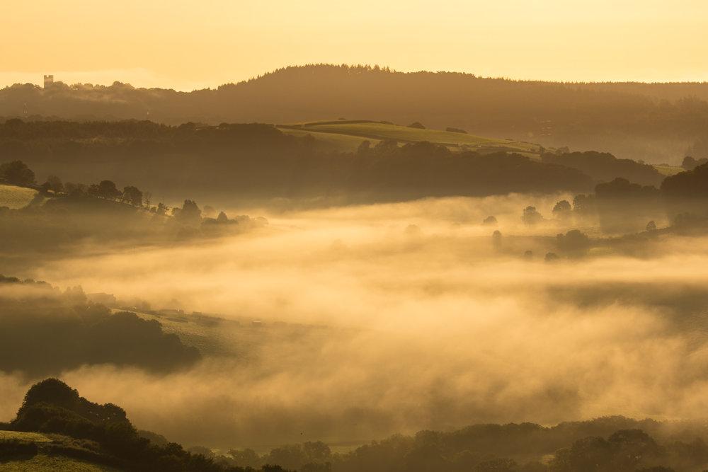 Mist LR (2 of 8).jpg