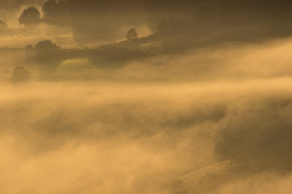 Mist LR (8 of 8).jpg