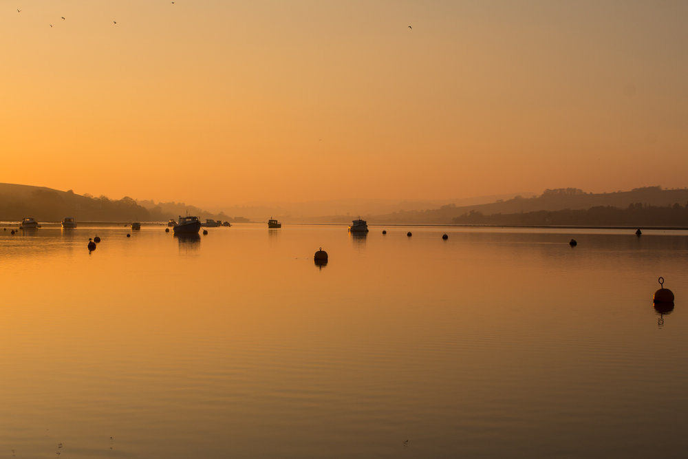 Teign Estuary, Shaldon