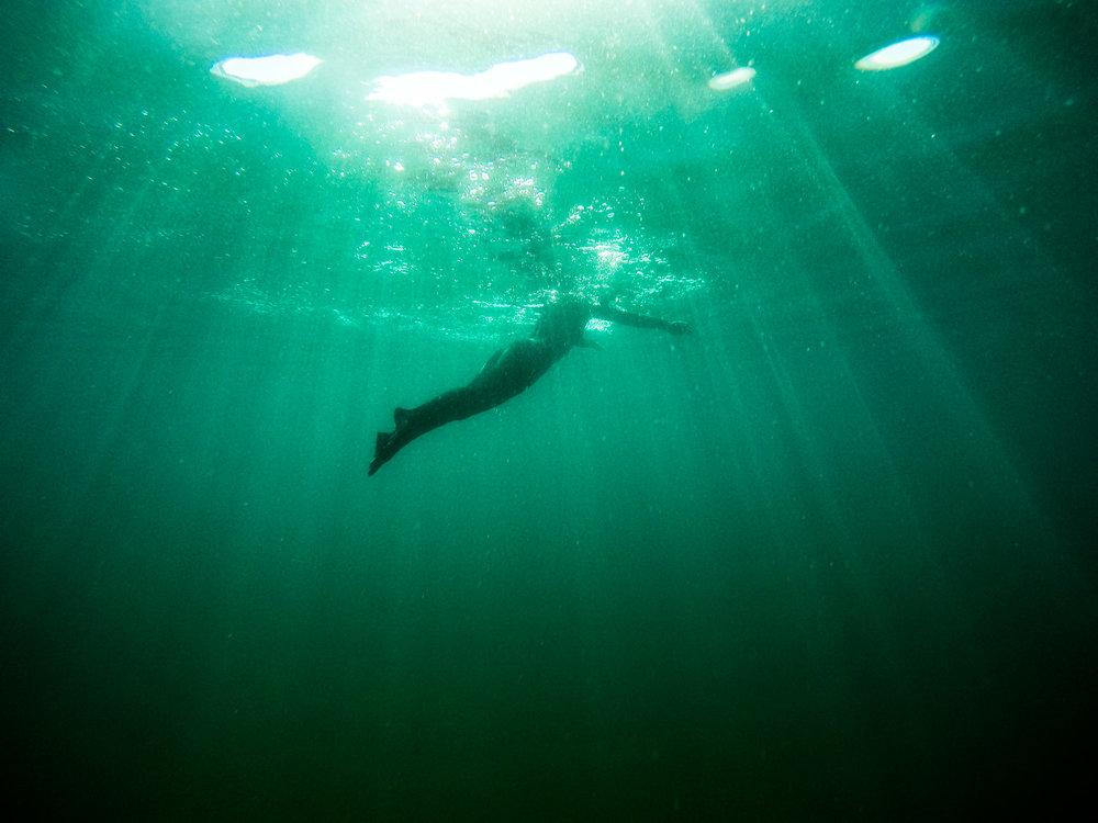 South Devon Swimming