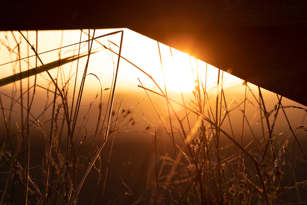 Dunsford Sunset LR (7 of 7).jpg