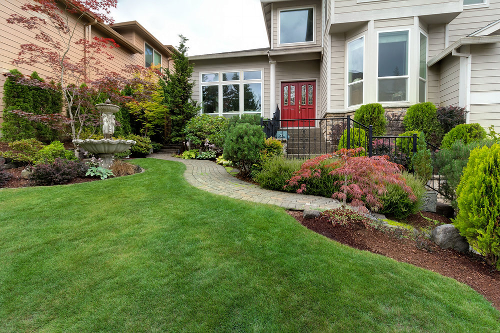 How to Landscape on and Around Your New Septic Tank in Tarrytown, NY
