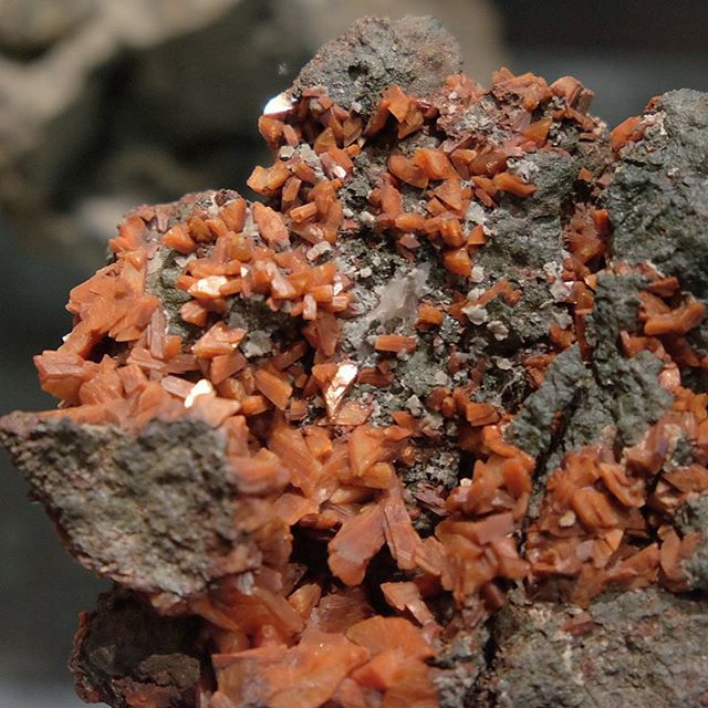 ◼ Wulfenite ◼  #natgeo #splendid_earth #earthfocus #pixel_ig #awesomeearth #picoftheday #minerals #crystallove #stones #gemology #crystals #beautiful #igdaily #fineminerals #love #gem #gems #crystal #igers #instagood #gemsandminerals #mineralogy #naturalstones #rawgems #rawstones #geology #follow4follow