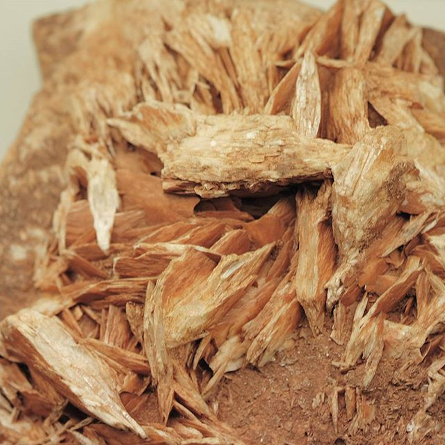 ◼ Barite ◼  It almost looks like wood, lovely specimen