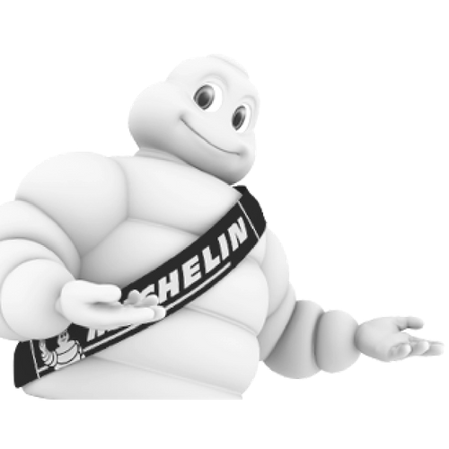 Michelin Website Logo.png