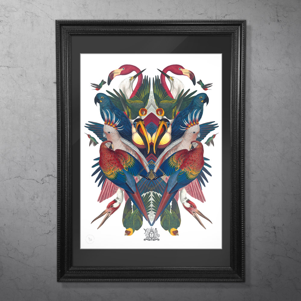 DIVINE BIRDS FRAMED.jpg
