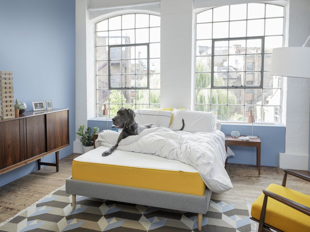 the+eve+mattress_lifestyle16.jpg