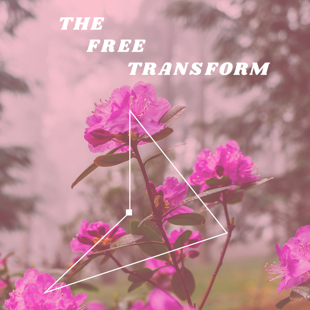 The Free Transform - This band has a 70s folk vibe. RIYL Fleet Foxes and Fleetwood Mac.