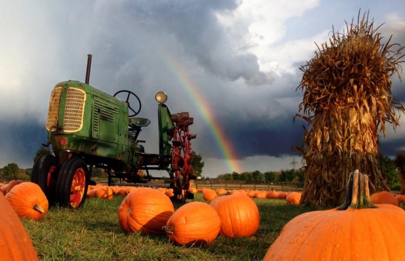 Tractor-Rainbow-832x536.jpg