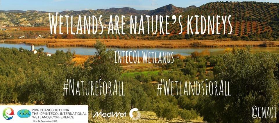 MedWet_WetlandsForAll_campaign (9).jpg