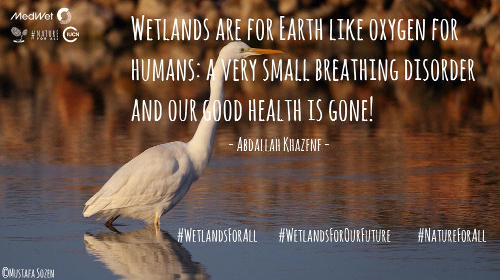 WetlandsForAll-campaign (1).jpg
