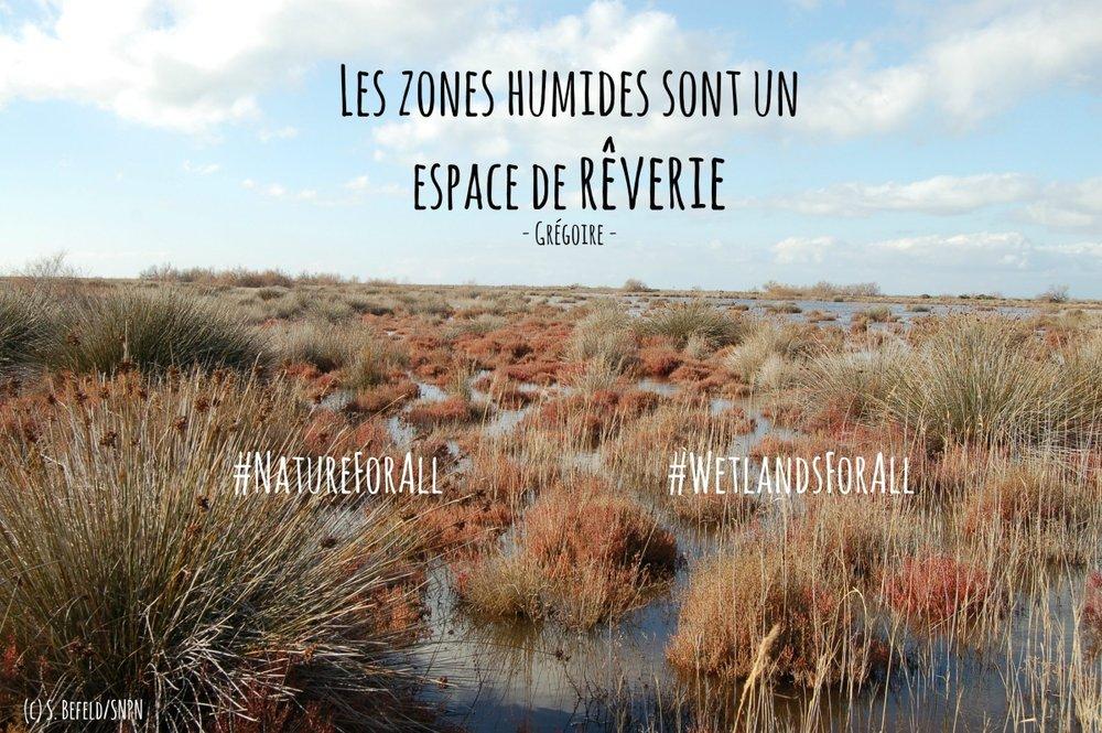 WetlandsForAll-campaign (4).jpg